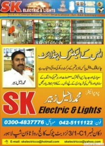 48_sk_electric_and_light_house