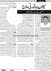 26_fruits_and_treatment_health_artical