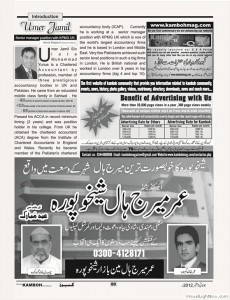 80_umer_jamil_english_+_shadi_hall_+_kamboh_addvertisement_terif_for_website