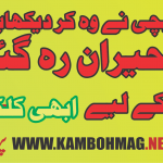 Kamboh Girl grab 1st position in Matric results 2016